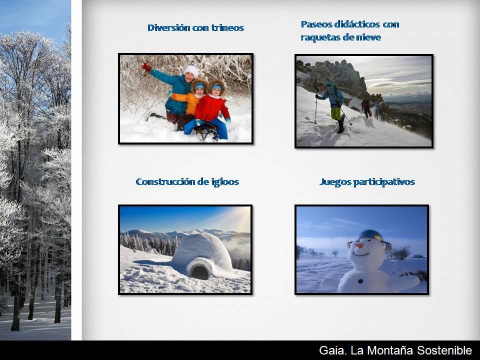 Actividades para colegios Madrid y Actividades extraescolares Madrid