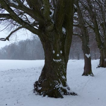 rutas nieve madrid