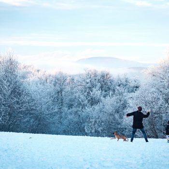 ruta raquetas de nieve en madrid