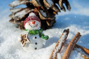 Actividades con nieve en Navacerrada