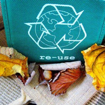 Taller de reciclaje para niños de educación infantil